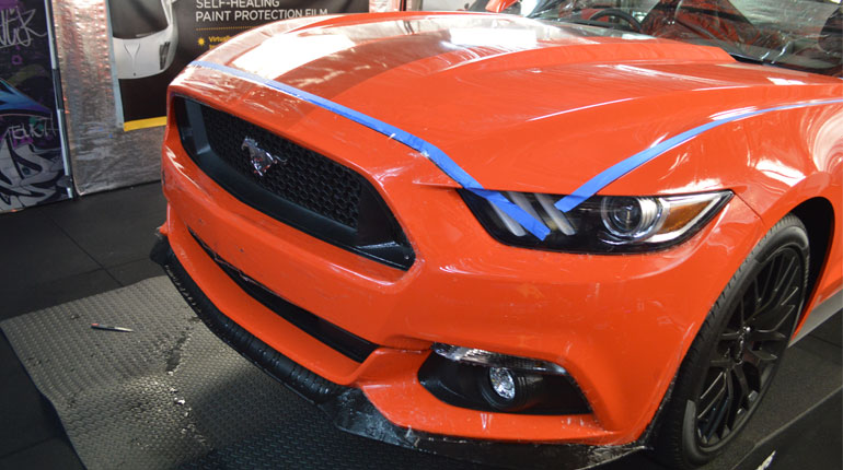Mustang Paint Protection
